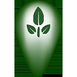 Green Travel
